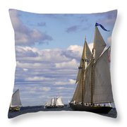 Beautiful History Throw Pillow