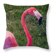 Beautiful In Pink Throw Pillow