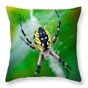Beautiful Killer. Throw Pillow