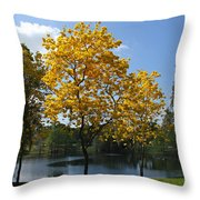 Beautiful Lake Como Throw Pillow
