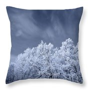 Beautiful Landscape With A Stormy Wind Throw Pillow