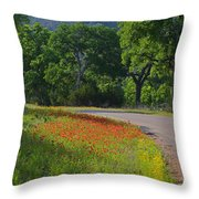 Beautiful Light On The Loop Throw Pillow