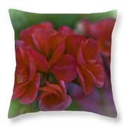 Beautiful Little Red Flowers Throw Pillow
