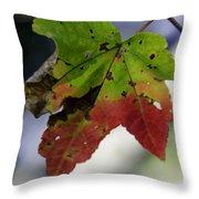 Beautiful Maple Leaf Throw Pillow