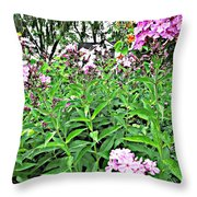 Beautiful Moments  Throw Pillow