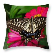 Beautiful Swallowtail Butterfly Throw Pillow
