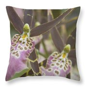 Beautiful Mtssa. Shelob 'tolkien' - Orchids - Mericlone  Throw Pillow by Sharon Mau