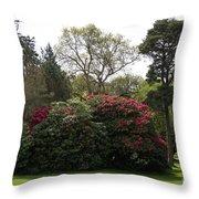 Beautiful Muckross Gardens In Spring Throw Pillow