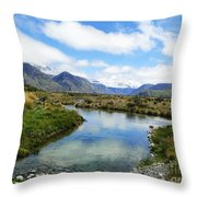 Beautiful New Zealand Throw Pillow