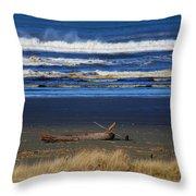 Beautiful Ocean Shores Throw Pillow