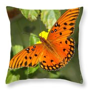 Beautiful Orange Butterfly - Gulf Fritillary Throw Pillow