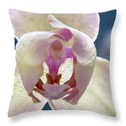 Beautiful Orchid Throw Pillow by Dana Moyer