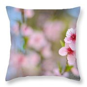 Beautiful Peach Flower Against Blured Background Throw Pillow