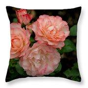 Beautiful Peach Roses Throw Pillow