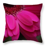 Beautiful Petals Throw Pillow