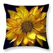 Beautiful Petals Throw Pillow