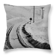 Beautiful Picture Throw Pillow