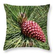 Beautiful Pine Throw Pillow