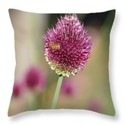 Beautiful Pink Flower With Bee Throw Pillow