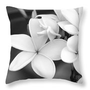 Beautiful Plumeria In Black And White Throw Pillow