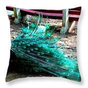 Beautiful Plummage Throw Pillow