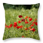 Beautiful Poppies 1 Throw Pillow