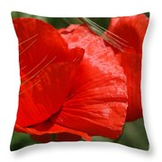 Beautiful Poppies 10 Throw Pillow