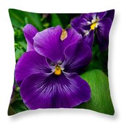 Beautiful Purple Pansies Throw Pillow