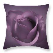 Beautiful Purple Rose Throw Pillow