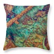 Beautiful Rebar Hot Springs Throw Pillow