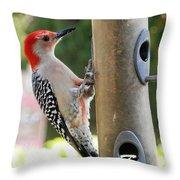Beautiful Red Belly Woodpecker Jr Throw Pillow