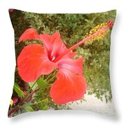 Beautiful Red Hibiscus Flower With Garden Background Throw Pillow