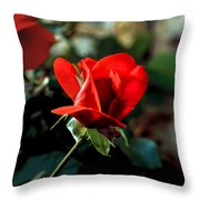 Beautiful Red Rose Bud Throw Pillow by Robert Bales