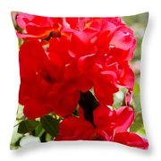 Beautiful Red Roses Throw Pillow