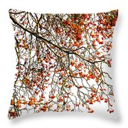 Beautiful Rowan 1 Throw Pillow