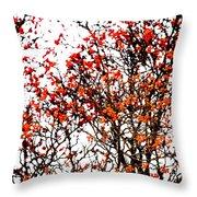 Beautiful Rowan 12 Throw Pillow