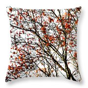 Beautiful Rowan 3 - Square Throw Pillow