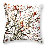 Beautiful Rowan 4 Throw Pillow