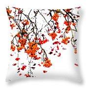 Beautiful Rowan 5 - Square Throw Pillow