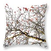 Beautiful Rowan 6 - Square Throw Pillow