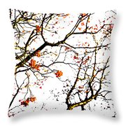 Beautiful Rowan 7 Throw Pillow