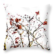 Beautiful Rowan 8 Throw Pillow