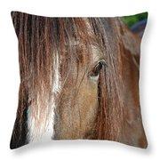 Beautiful Shire Throw Pillow
