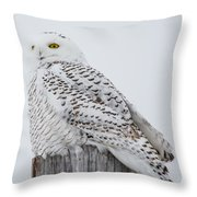 Beautiful Snowy Owl Throw Pillow