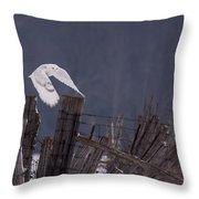 Beautiful Snowy Owl Flying Throw Pillow
