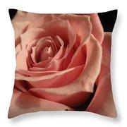 Beautiful Peach Rose Throw Pillow