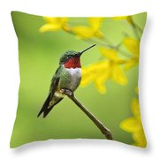 Beautiful Summer Hummer Throw Pillow