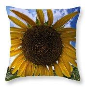 Beautiful Sunflower Throw Pillow