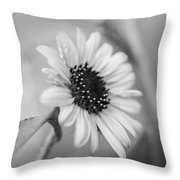 Beautiful Sunflower In Monocrome Throw Pillow