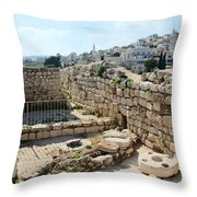 Beautiful Taybeh Village Throw Pillow